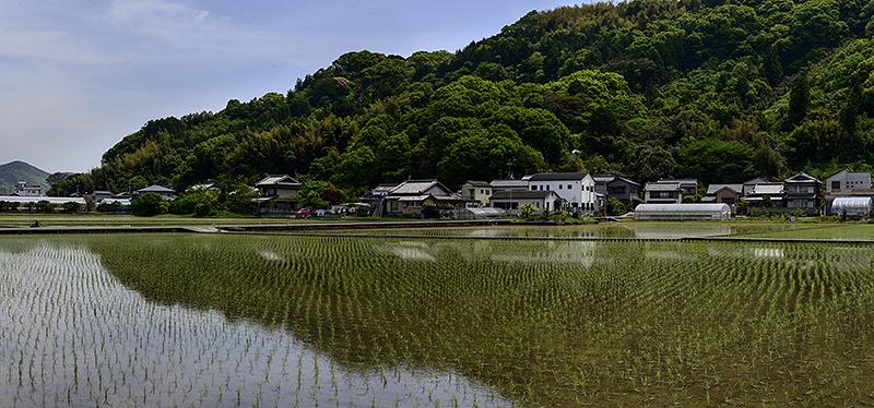 Japan, Kochi. Apr/23/2015.