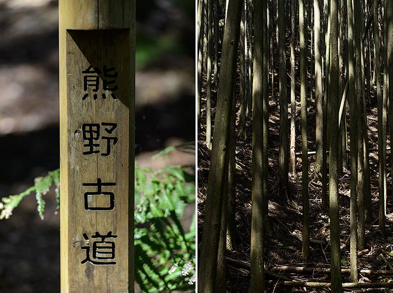 Japan, Mie. Apr/18/2015. Kumano Kodo. Furusato - Minose.