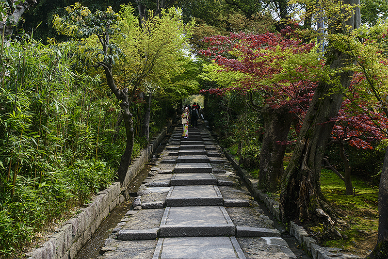 Japan, Kyoto. Apr/16/2015. Gion District walk. Kodaiji Temple, Maruyama Park.